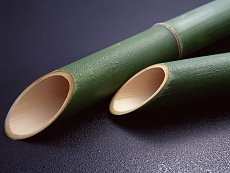 Moso Bamboo - a sustainably harvested grass