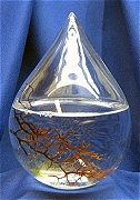 EcoSphere Waterdrop Shape