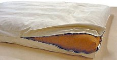 Organic Futon with Cotton Cover