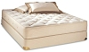 Organic Cotton Mattress and Box Spring