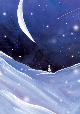 Beautiful Snowy White Owl