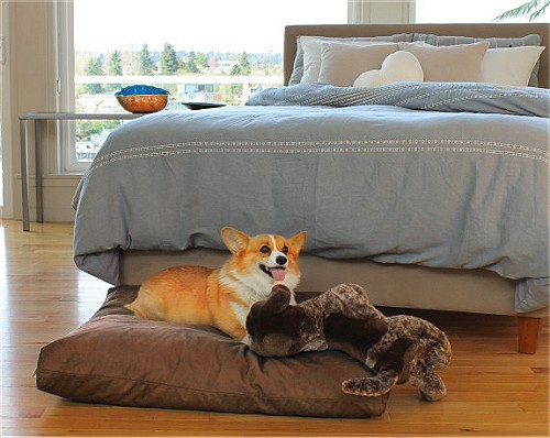 Organic Terra Dog Bed With Washable Organic Cover